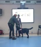 Mokytojai dalyvavo kinologinio švietimo paskaitoje