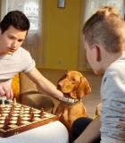 Vaikų integracijai padeda terapiniai šunys