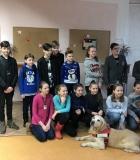 Edukacija su šunimis: svarbiausia – pagarba gyvūnui
