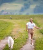 Chemikalais apdoroti laukai pavojingi šunims
