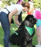 Prasmingas ir naudingas susitikimas su šunimis