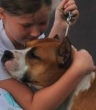 Kodėl šunims nepatinka apkabinimai?